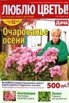 Люблю цветы №10, 2009 год