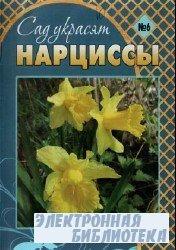 Сад украсят. Нарциссы № 6 2009
