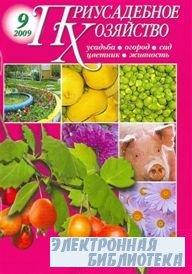 Приусадебное хозяйство №9 2009