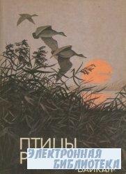 Птицы России. Байкал.