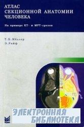 Атлас секционной анатомии человека на примере КТ- и МРТ-срезов. Том 1. Голо ...