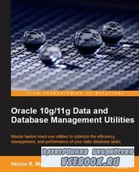 Oracle 11g Streams Implementers Guide