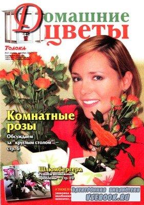 Домашние цветы №2, 2007