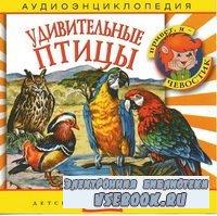 Аудиоэнциклопедия Удивительные птицы аудиоспектакль