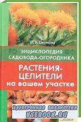 Растения-целители на вашем участке