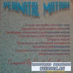 Перинатальные матрицы