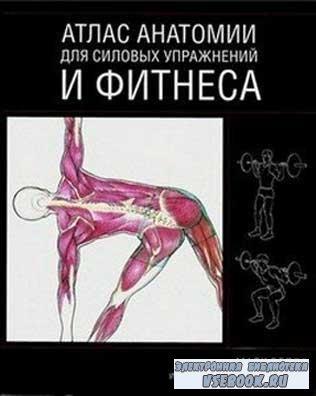 Атлас анатомии для силовых упражнений и фитнеса