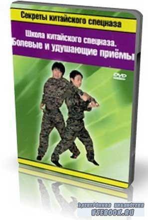 Школа китайского спецназа – Болевые и удушающие приемы (2009|/DVDRip)