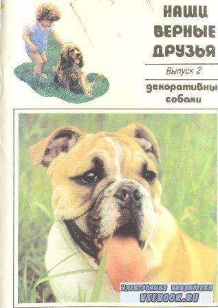 Декоративные собаки. Выпуск 2