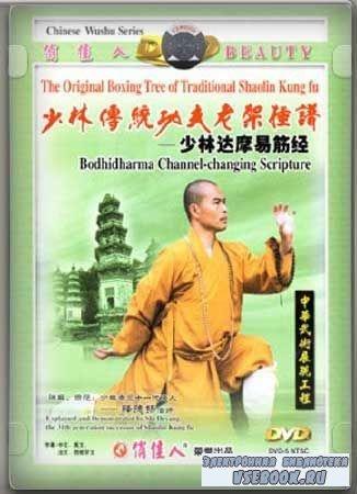 Шаолинь Дамо Ицзин Цзинь/Shaolin Damo Yi Jin Jing (2010/DVDRip)