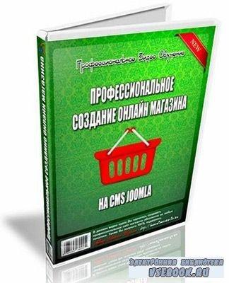 Профессиональное создание онлайн магазина на CMS Joomla (2011/CamRip)