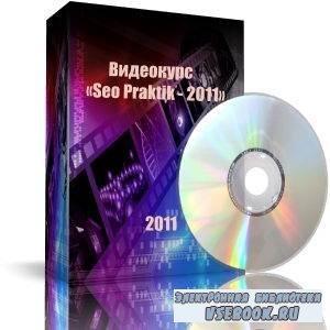 Видеокурс «Seo Praktik - 2011»