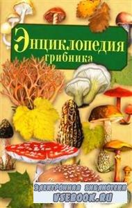 Умельцев А.П. Энциклопедия грибника (2005) PDF
