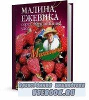 Николай Звонарев - Малина, ежевика. Сорта, выращивание, уход (2011)