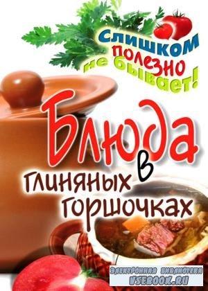 Дарья Нестерова «Блюда в глиняных горшочках»(2011/pdf)