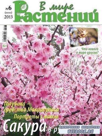 В мире растений №6 (июнь 2013)
