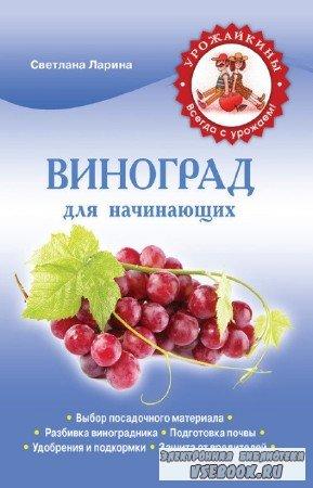 Ларина Светлана - Виноград для начинающих