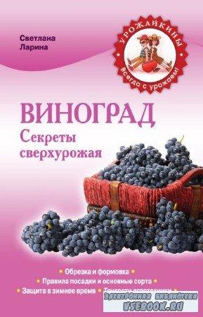 Ларина Светлана - Виноград. Секреты сверхурожая