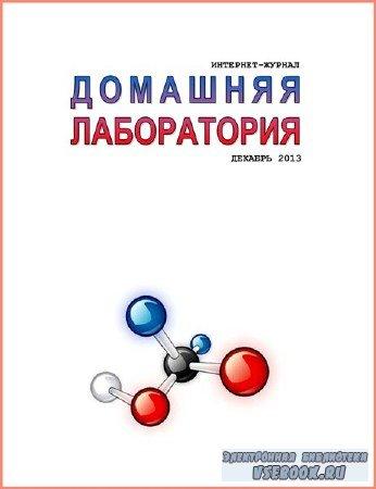 Домашняя лаборатория №12 (декабрь 2013)