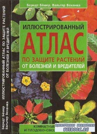 Иллюстрированный атлас по защите комнатных растений от болезней и вредителе ...