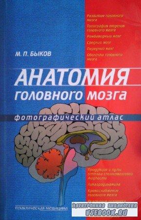 Быков М.П. - Анатомия головного мозга. Фотографический атлас