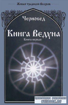 Василий Шадрин - Книга Ведуна