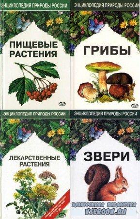 коллектив - Энциклопедия природы России. Сборник (7 книг)