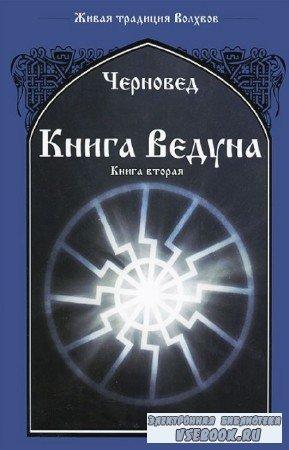 Василий Шадрин - Книга Ведуна. Книга 2