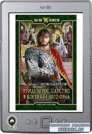 Новожилов Денис - Тридевятое царство. В когтях белого орла
