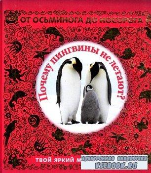 отные в вопросах и ответах. Почему пенгвины не летают? -  Животные в вопрос ...