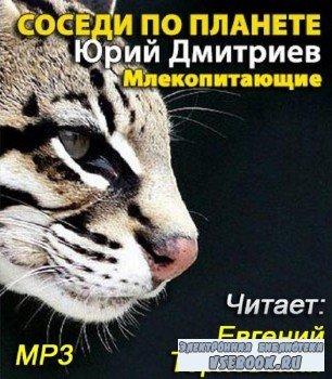 Дмитриев Ю.  -   Соседи по планете. Млекопитающие (аудиокнига)