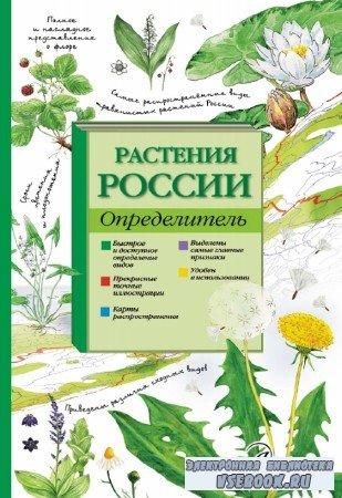 И.М. Пескова - Растения России. Определитель