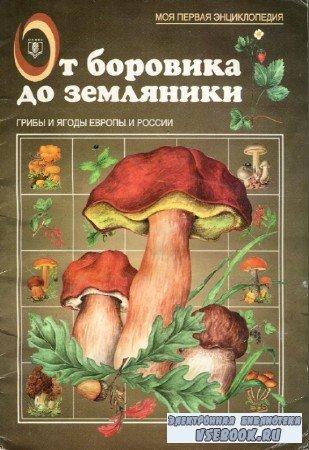 А.В. Маталин - От боровика до земляники