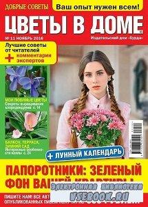 Добрые советы. Цветы в доме №11 - 2016