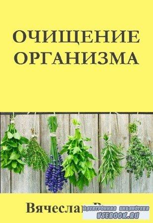 Вячеслав Рузов - Очищение организма