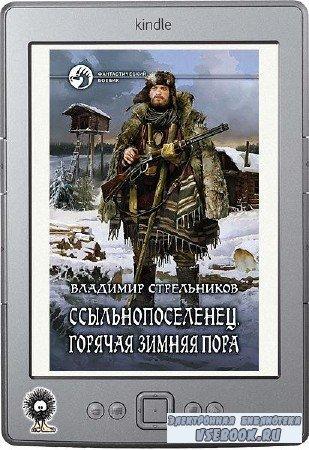 Стрельников Владимир - Горячая зимняя пора