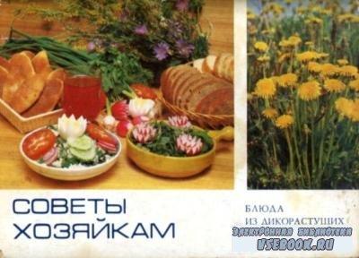 Стекольников Л. - Советы хозяйкам. Блюда из дикорастущих трав (1985)