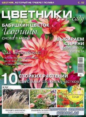 Цветники в саду №10 - 2017