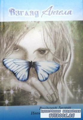 Лесных В. Ф., Харламов И. - Взгляд ангела (2011)