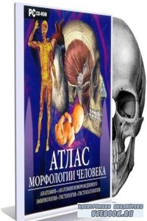 Коллектив авторов - Атлас морфологии человека (2005)