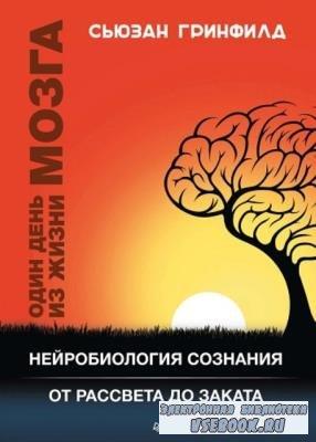 Сьюзан Гринфилд - Один день из жизни мозга. Нейробиология сознания от рассвета до заката (2018)