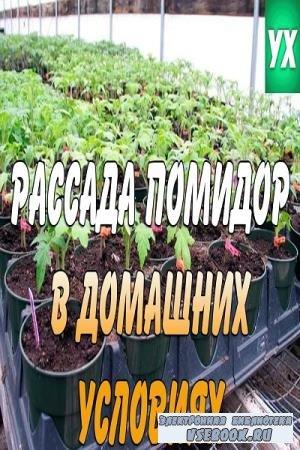 Коллектив авторов - Рассада помидор в домашних условиях (2019)