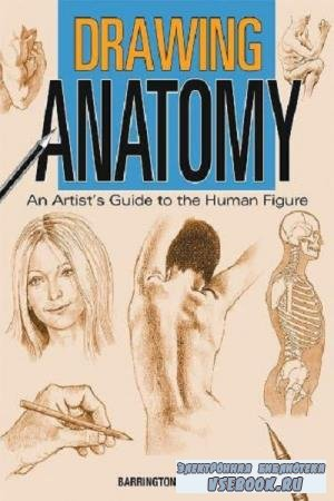Barber Barrington - Drawing Anatomy: The Artist's Guide to the Human Figure (2011)
