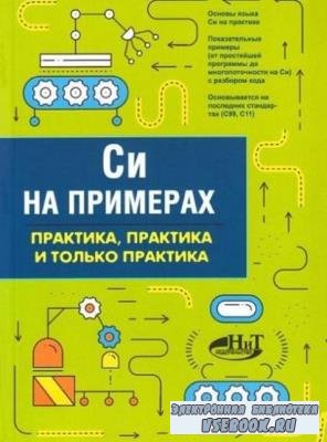 Кольцов Д.М. - Си на примерах. Практика, практика и только практика (2019)