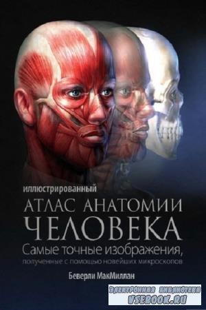 Б. МакМиллан - Иллюстрированный атлас анатомии человека (2010)