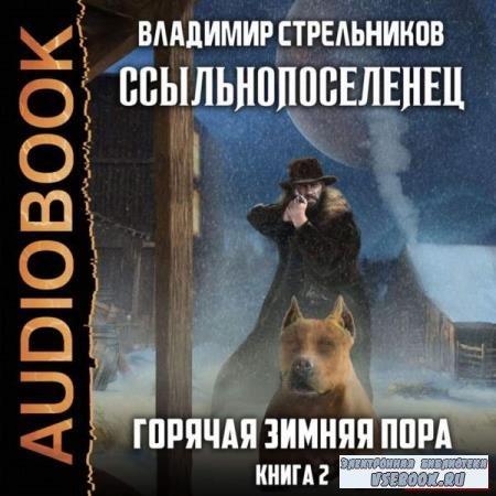 Владимир Стрельников. Горячая зимняя пора (Аудиокнига)