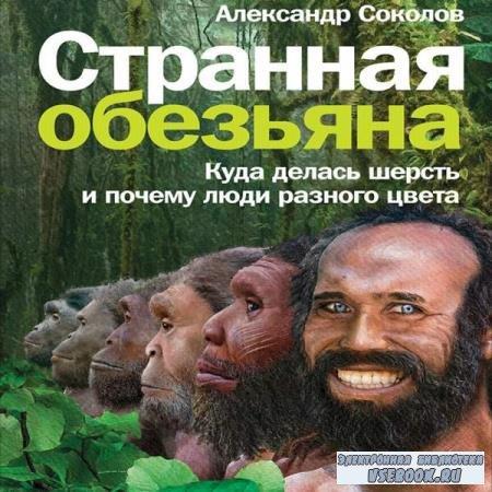 Александр Соколов. Странная обезьяна. Куда делась шерсть и почему люди разного цвета (Аудиокнига)