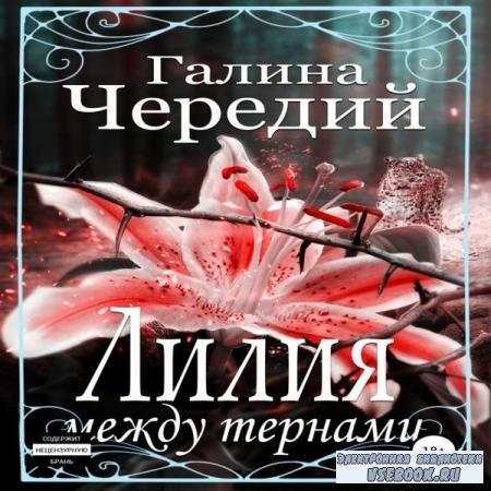 Галина Чередий. Лилия между тернами (Аудиокнига)